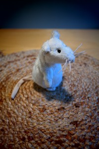 Rotat ja hiiret ovat yleisimpiä koe-eläimiä.