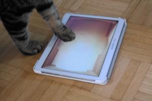 Kissan kiinnostus taulutietokoneen peleihin on laantumassa.